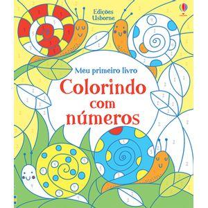Livro-Colorindo-com-Numeros